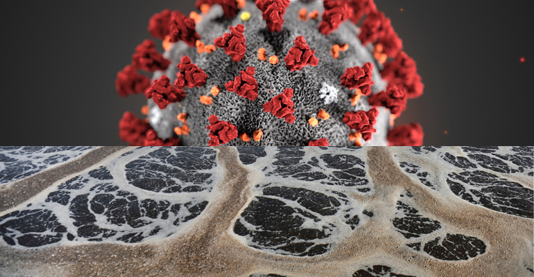 Agua y coronavirus: AEAS y el posicionamiento sectorial en cuanto al COVID-19 en saneamiento