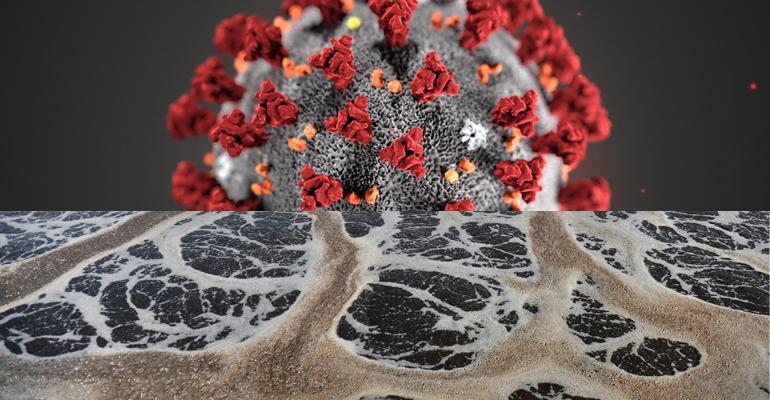 Agua y coronavirus: ¿Conviene analizar las aguas residuales en busca del virus?