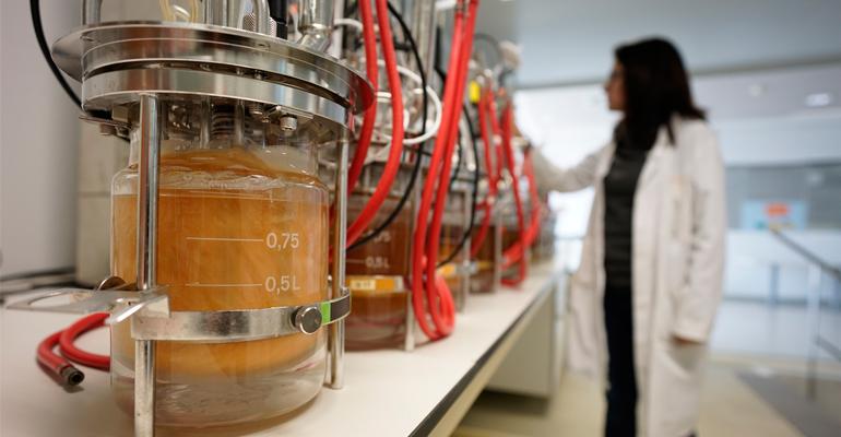 ainia-desarrolla-biofactorias-microorganismos