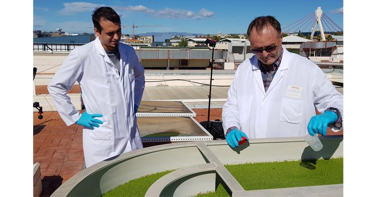 Se pone en marcha la primera planta semiindustrial para recuperar nutrientes de purines porcinos con cultivos de lenteja de agua