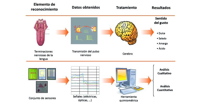articulo-tecnico-analisis-organoleptico-agua-consumo-humano-microsensores