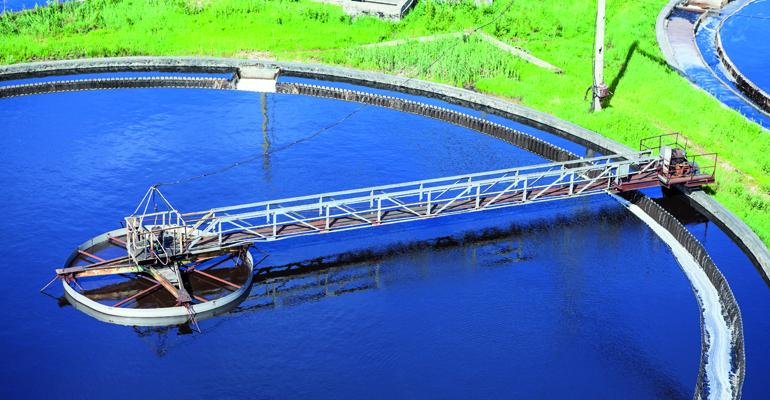 articulo-tecnico-seguimiento-proceso-bulking-meganema-perideroedes