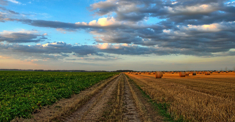 dam-estacion-depuradora-aguas-residuales-agricultura-estruvita-proyecto-phertilizer