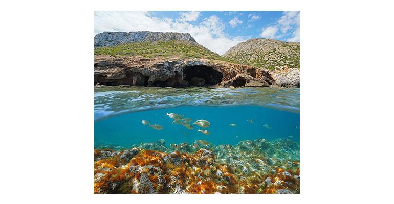 Más de 400 entidades acreditadas por ENAC ayudan a mejorar la protección del medio ambiente y la preservación de la biodiversidad