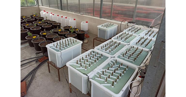 eulen-inia-imdea-investigan-filtro-verde-reutilizacion-aguas-residuales-industriales-cervecera