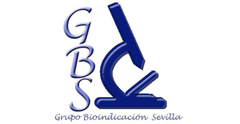 gbs-cursos-logo-noviembre.jpg