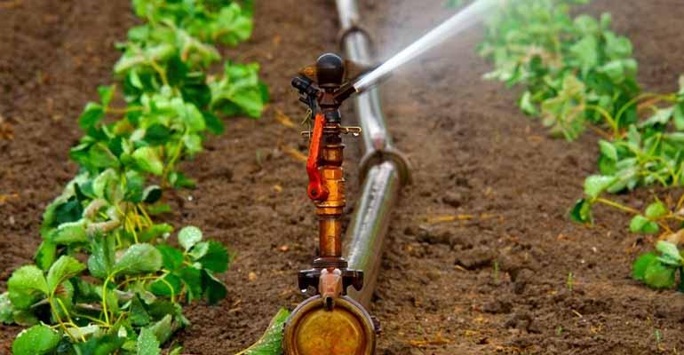 Investigadores del IIAMA desarrollan una nueva técnica para minimizar el tiempo de limpieza de las redes de riego a presión