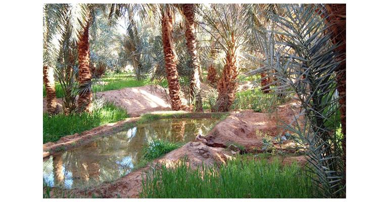 iiama-proyecto-egroundwater-sistemas-informacion-gestion-aguas-subterraneas-acuifero