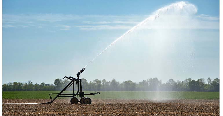 Campo de riego del proyecto de gobernanza de agua y energía del IIAMA