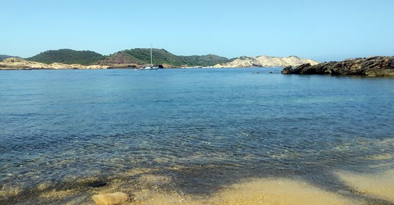 iiama-tesis-contaminacion-nitrogeno-ecosistemas-costeros