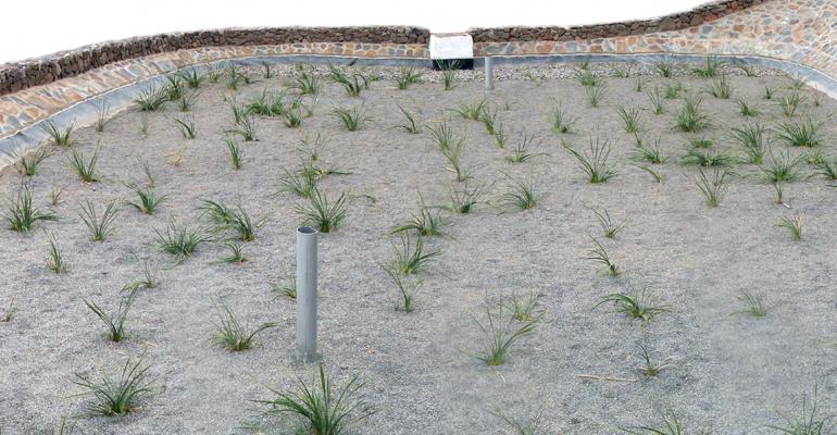 itc-informe-sistemas-depuracion-natural-aguas-residuales