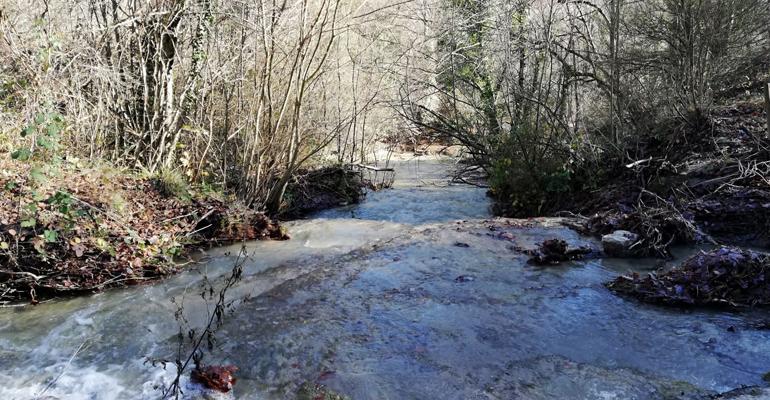 miteco-participacion-planes-hidrologicos-webinars