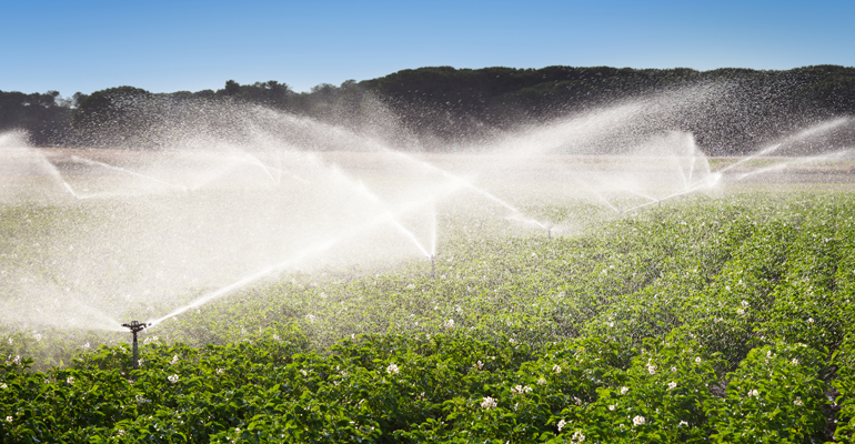 consejo-europeo-reutilizacion-agua-riego-agricola