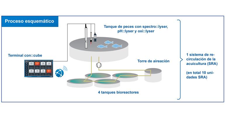 procesos-sistemas-scan-monitorizacion-calidad-agua-sistemas-recirculacion-acuicultura-esquema