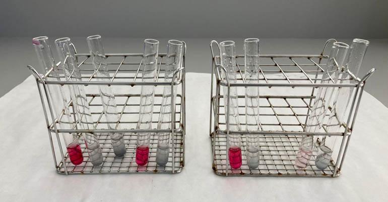 Investigadores de la UPCT eliminan en más de un 75% nitratos del agua en pruebas piloto del proyecto europeo LIFE-DESIROWS