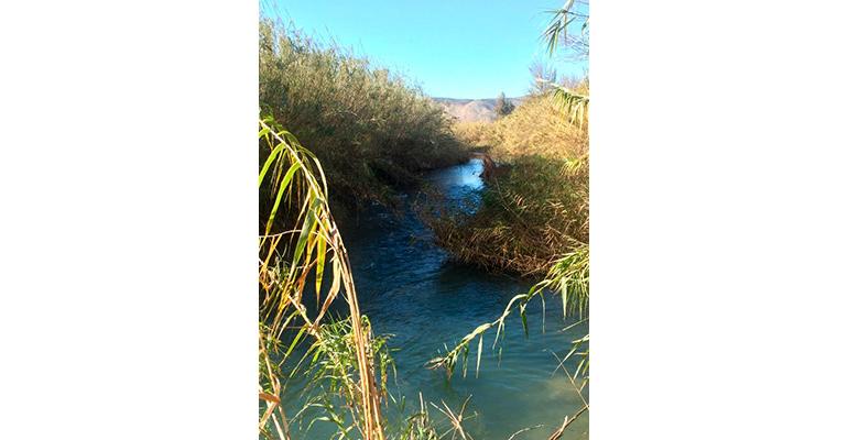 upv-fibernova-red-sensores-calidad-agua-rios