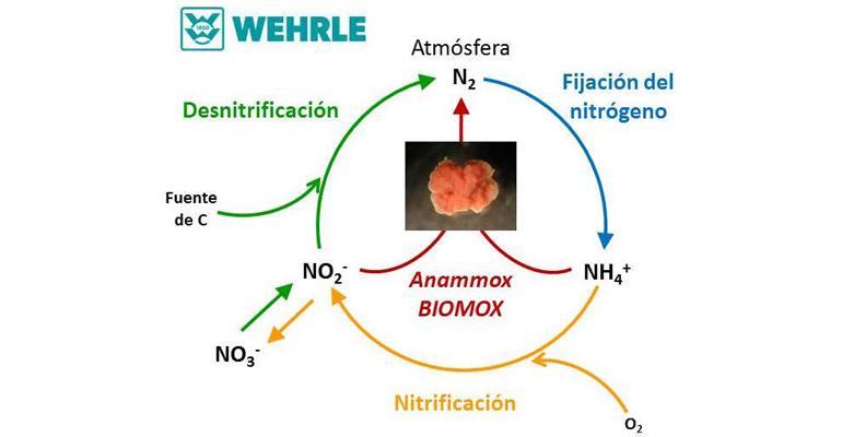 wehrle-implanta-tecnologia-biomox-tratamiento-escurridos-estacion-depuradora-aguas-residuales-badajoz